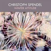 Winter Attitude von Christoph Spendel