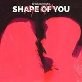 Shape Of You de Mike Emilio