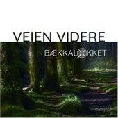 Veien videre von Bækkalokket
