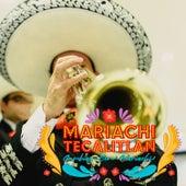 Mariachi Tecalitlan Cumbias Con Mariachi by Mariachi Vargas de Tecalitlan