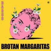 Brotan Margaritas de Barco