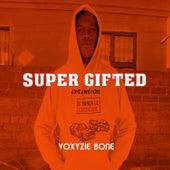 Super Gifted Extension von Voxyzie Bone