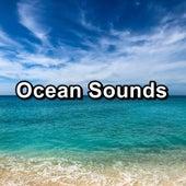 Ocean Sounds by Ocean Sounds (1)