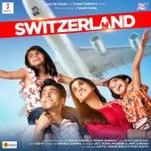 Switzerland de Savvy