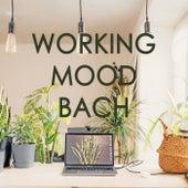 Working Mood - Bach de Johann Sebastian Bach