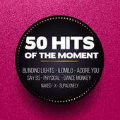 50 Hits of the Moment von Various Artists