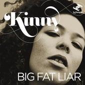 Big Fat Liar - EP by Kinny