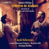 Rodrigo, Coll & Harden: Guitar Works von Jacob Kellermann