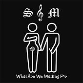 What Are We Waiting For by S