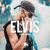 Elvis by Pegasus