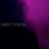 What I Know. von Yusuf / Cat Stevens