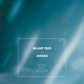 Awake von MilArt Trio