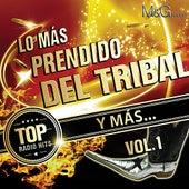 Lo Más Prendido Del Tribal Y Más Vol. 1 by Various Artists