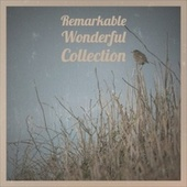 Remarkable Wonderful Collection von Various Artists