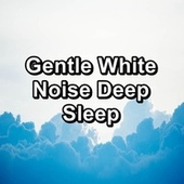 Gentle White Noise Deep Sleep by Yoga