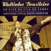 Ao Vivo na Vila do Samba (Ao Vivo) de Waltinho Brasileiro