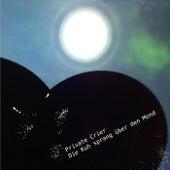 Die Kuh sprang über den Mond von Private Crier