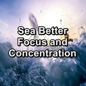 Sea Better Focus and Concentration by Yoga Music