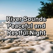 River Sounds Peaceful and Restful Night von Yoga Tribe