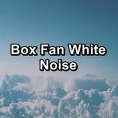 Box Fan White Noise by White Noise Babies