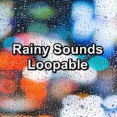 Rainy Sounds Loopable von Nature�s Music