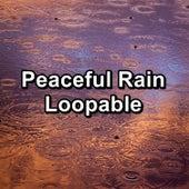 Peaceful Rain Loopable de Sleep Sounds