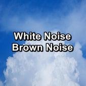 White Noise Brown Noise de White Noise Babies