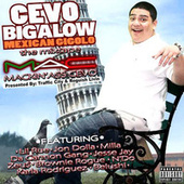 Cevo Bigalow Mexican Gigalo von BrownieRogue