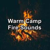 Warm Camp Fire Sounds de Ocean Sleeping Baby