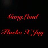GangLand by FN.Flacko