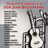 Tributo Flamenco A Don Juan Valderrama by Various Artists