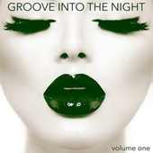 Groove into the Night, Volume 1 von Various Artists