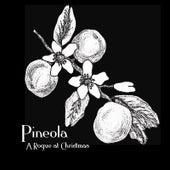 A Rogue at Christmas by Pineola