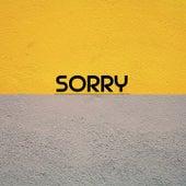 Sorry fra South Border