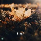 Leaf von MOOD