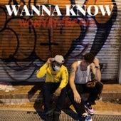 Wanna Know von Wonyay