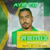 Aye Yo Remix by DJ Buddha (feat. Shaggy & Angela Hunte) de Quincy