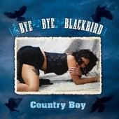 Bye Bye Blackbird by Country Boy
