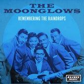 Remembering The Raindrops (338) de The Raindrops