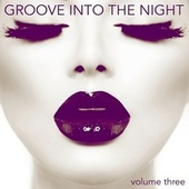 Groove into the Night, Volume 3 von Various Artists
