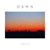 dawn by Focus
