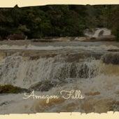 Amazon Falls von Various Artists