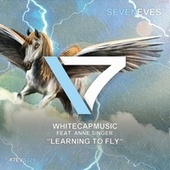 Learning to Fly (2020) von WhiteCapMusic