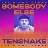 Somebody Else (Eli & Fur Remix) von Tensnake