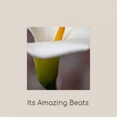 Its Amazing Beats by Various Artists