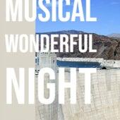 Musical Wonderful Night von Various Artists