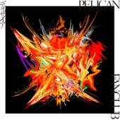 Desire von PELICAN FANCLUB