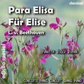 Para Elisa (feat. Roger Roman) - Single de Ludwig van Beethoven