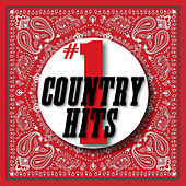 #1 Country Hits de Various Artists