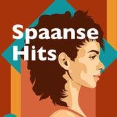 Spaanse Hits de Various Artists